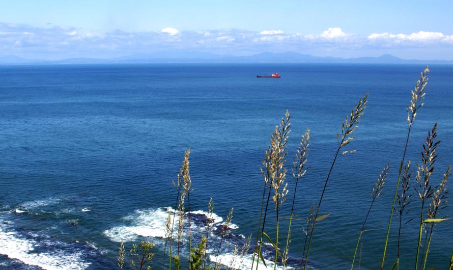 Компании из Петербурга и Владивостока намерены построить 3 мини-завода СПГ в Приморье