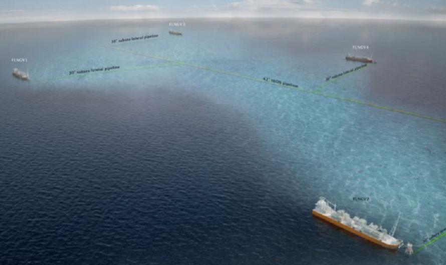 Delfin завершает предварительное проектирование плавучего СПГ