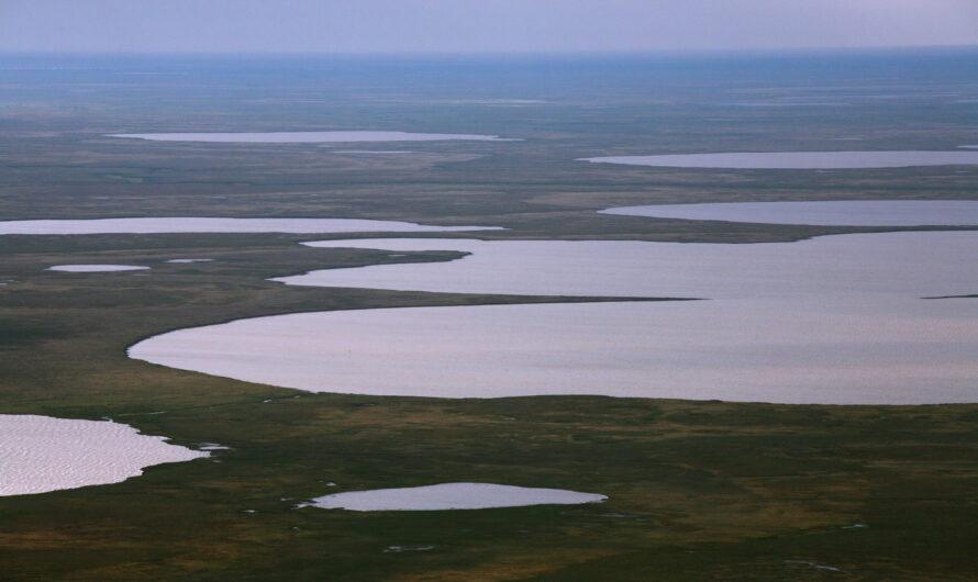 ООО «Арктик СПГ 1» выиграло аукцион на  право пользования Северо-Гыданским участком недр